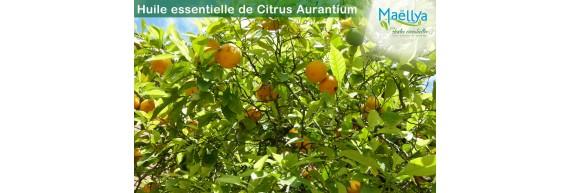 Huile essentielle d'écorce d'Orange douce