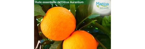 Huile essentielle de Citrus Aurantium