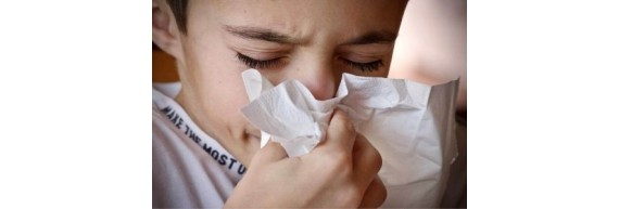 Allergies : action, réaction !
