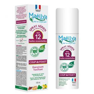 """Spray aérien """"Coup de Fouet"""" 100 ml Contrôlé Spray d'ambiance Ecocert"""